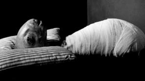Eraserhead (1977, USA)