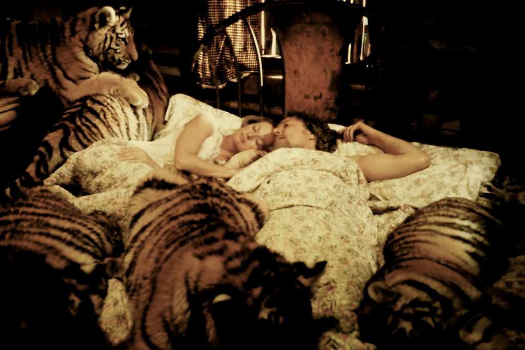 """""""Alamo-At-Home"""" Presents The Original TIGER KING: The Utterly Bonkers Thriller ROAR"""