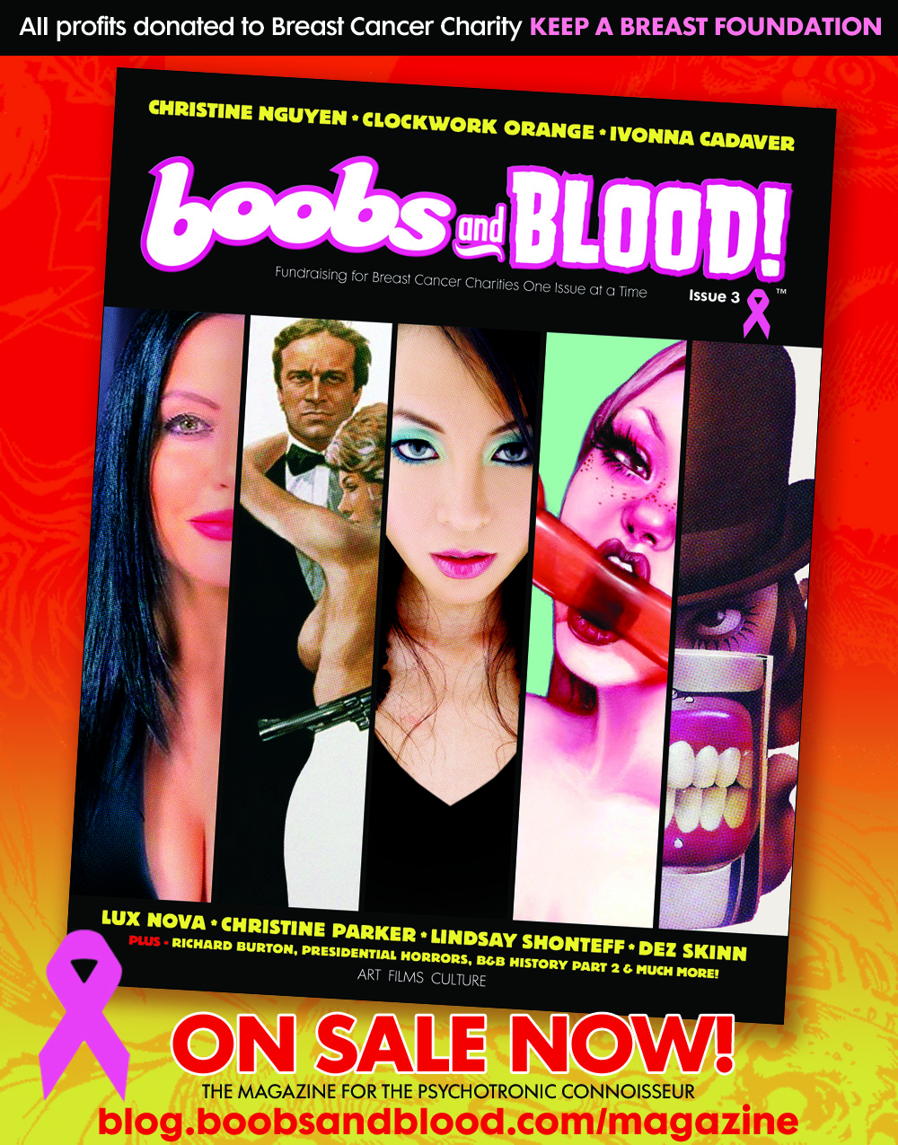 BOOBS & BLOOD Magazine Fundraising for Breast Cancer Charities One Issue at a Time