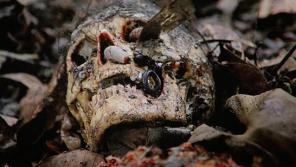 5 Essential Italian Cannibal Movies